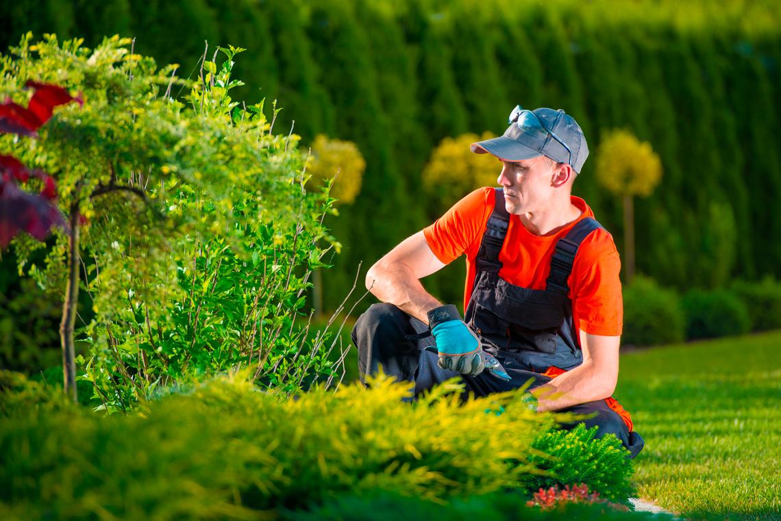 Créavert Services, travaux de jardinage